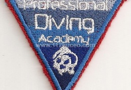 professional diving academy
