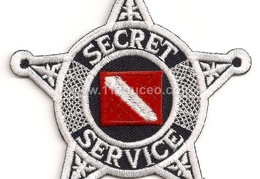 secret service dive team