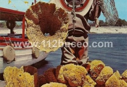 sponge diver showing sponges